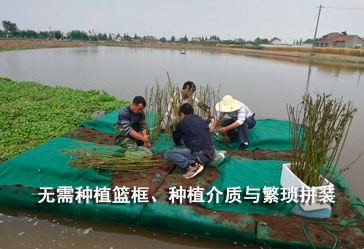 漂浮湿地工程安装