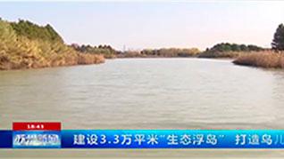 """<b>视频</b>:太湖湿地建设""""生态浮岛""""打造鸟儿栖息乐园"""