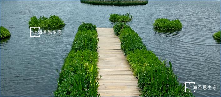 人工湖浮岛的应用:浮田型漂浮湿地