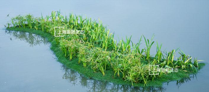 漂浮湿地治理城市河道