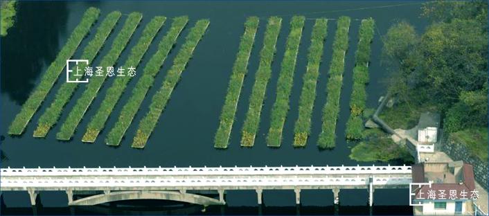 浮田型浮动湿地应用于水库治理