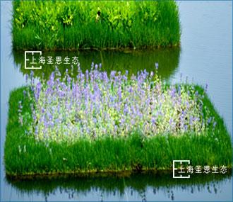 浮田型漂浮湿地(ZIPBIO型)