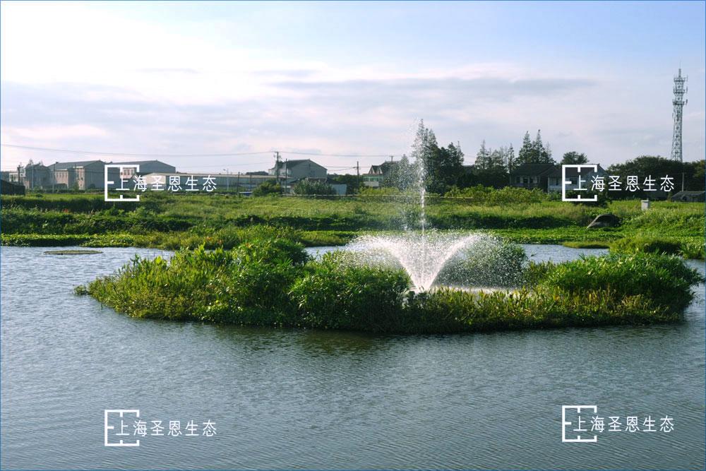 曝气机与漂浮湿地组合使用构建漂浮净水平台